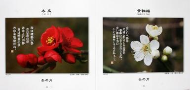 Book011_2