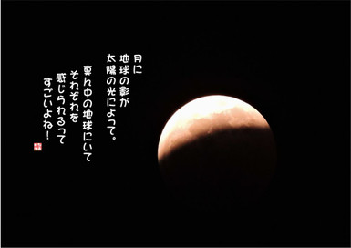 498_1000