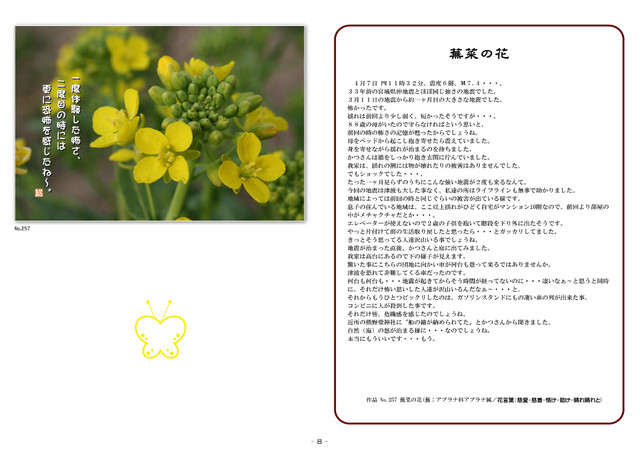 P08 蕪菜の花