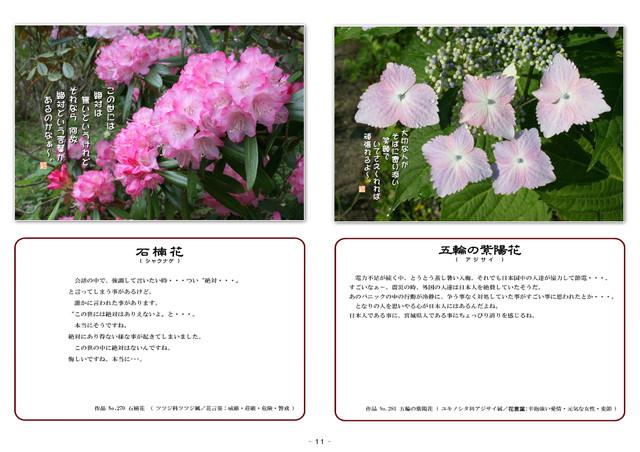 P11 石楠花・五輪紫陽花